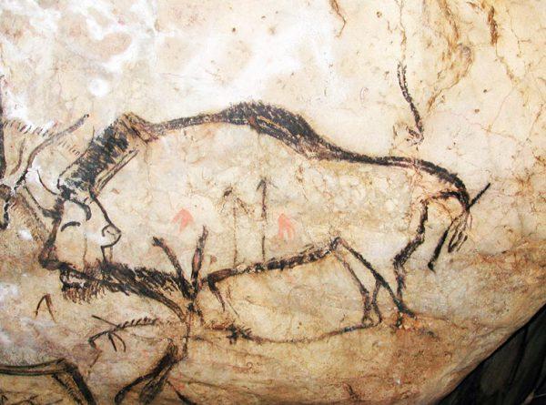 bison-grotte-de-niaux
